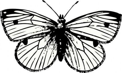 Moth clipart. Panda free images mothclipart
