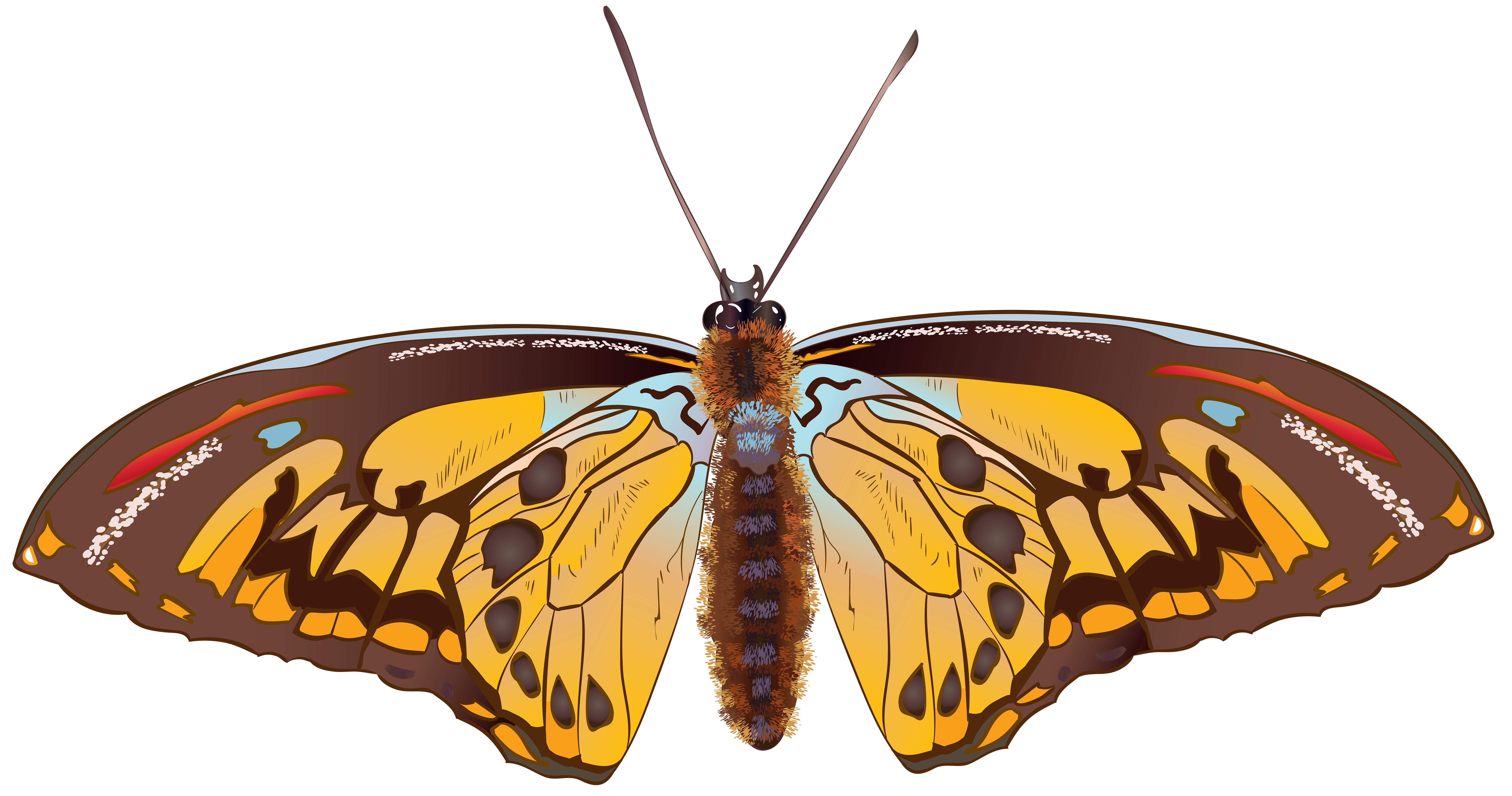 Moth clipart brown butterfly. Png clip art image