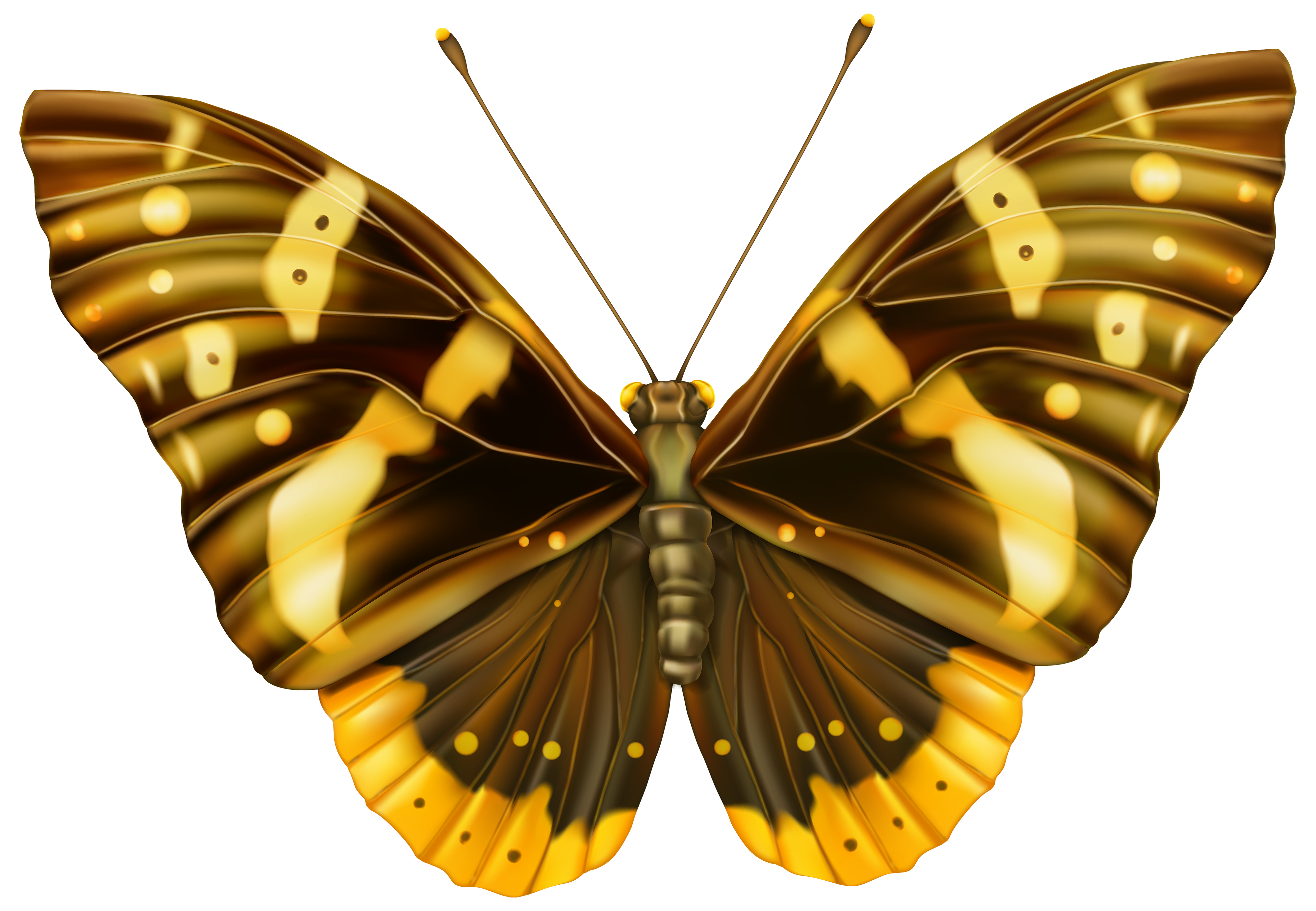 And yellow png image. Moth clipart brown butterfly