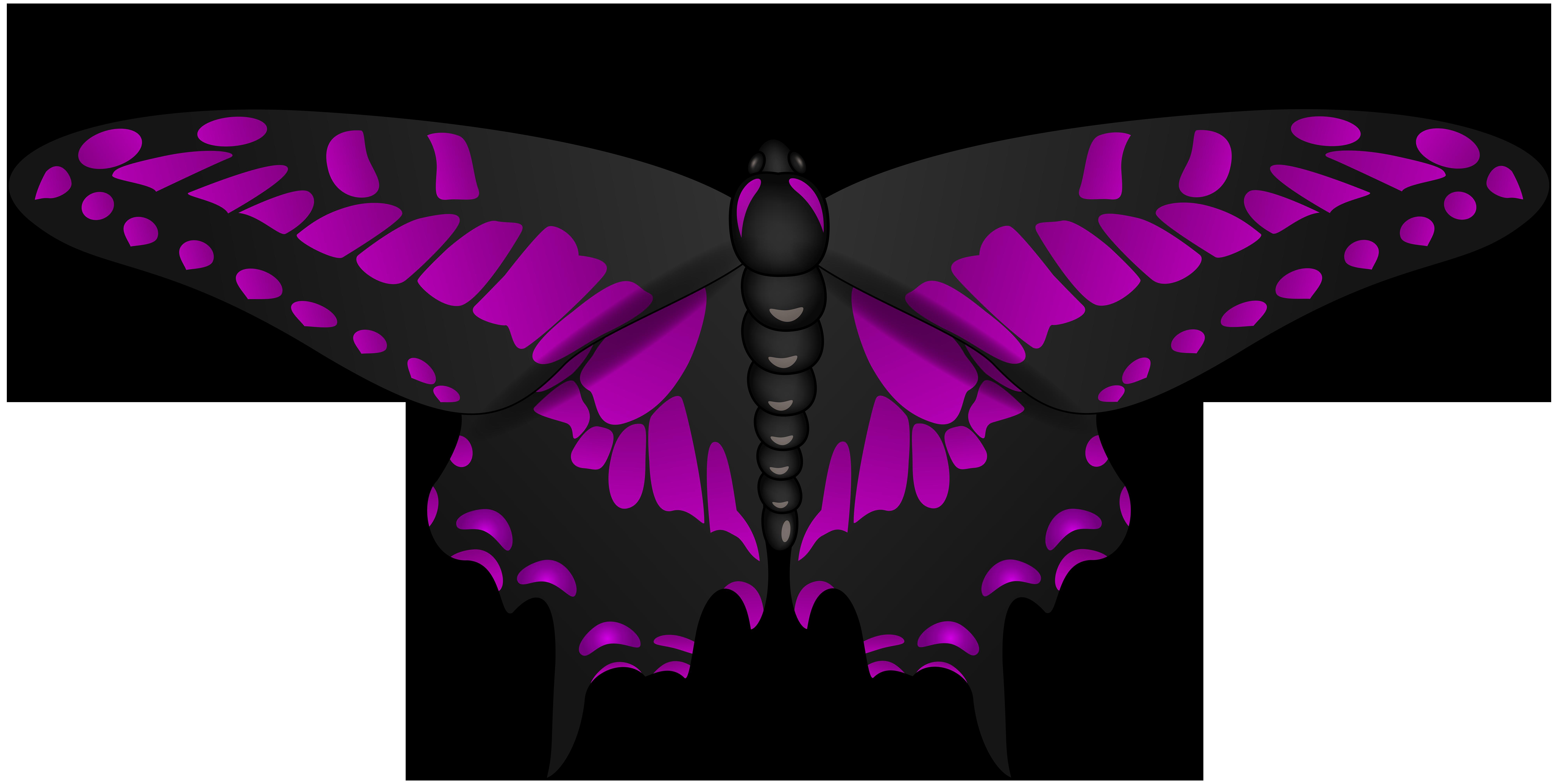 Moth clipart butterflyblack. Butterfly purple black clip