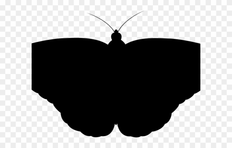 Moth clipart butterflyblack. Shadow monarch butterfly png