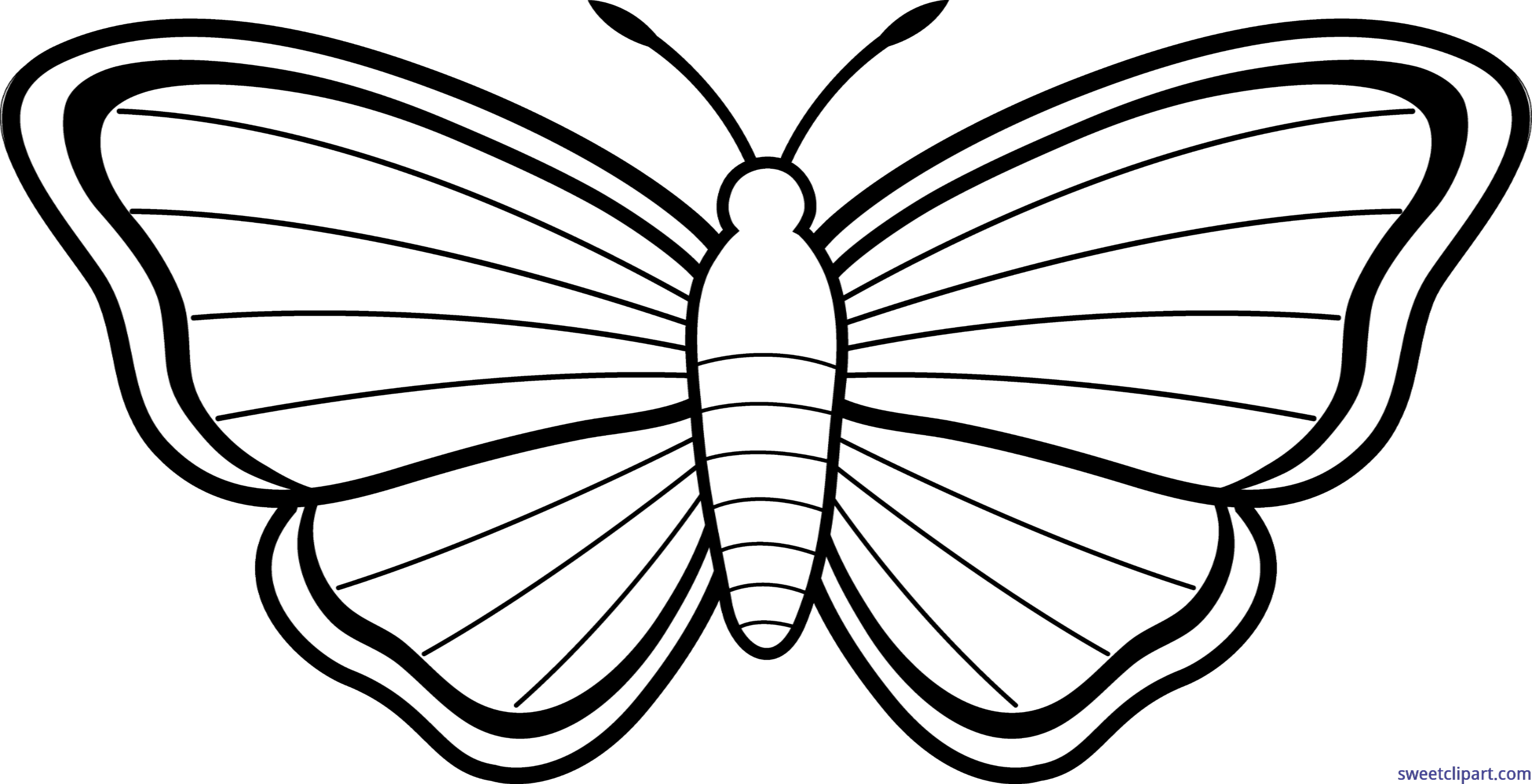 huge freebie download. Moth clipart cute