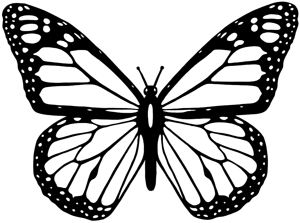 Onlinelabels clip art black. Moth clipart line drawing