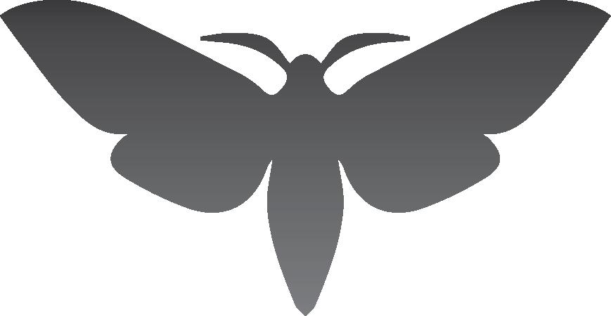 Paper studio . Moth clipart luna moth