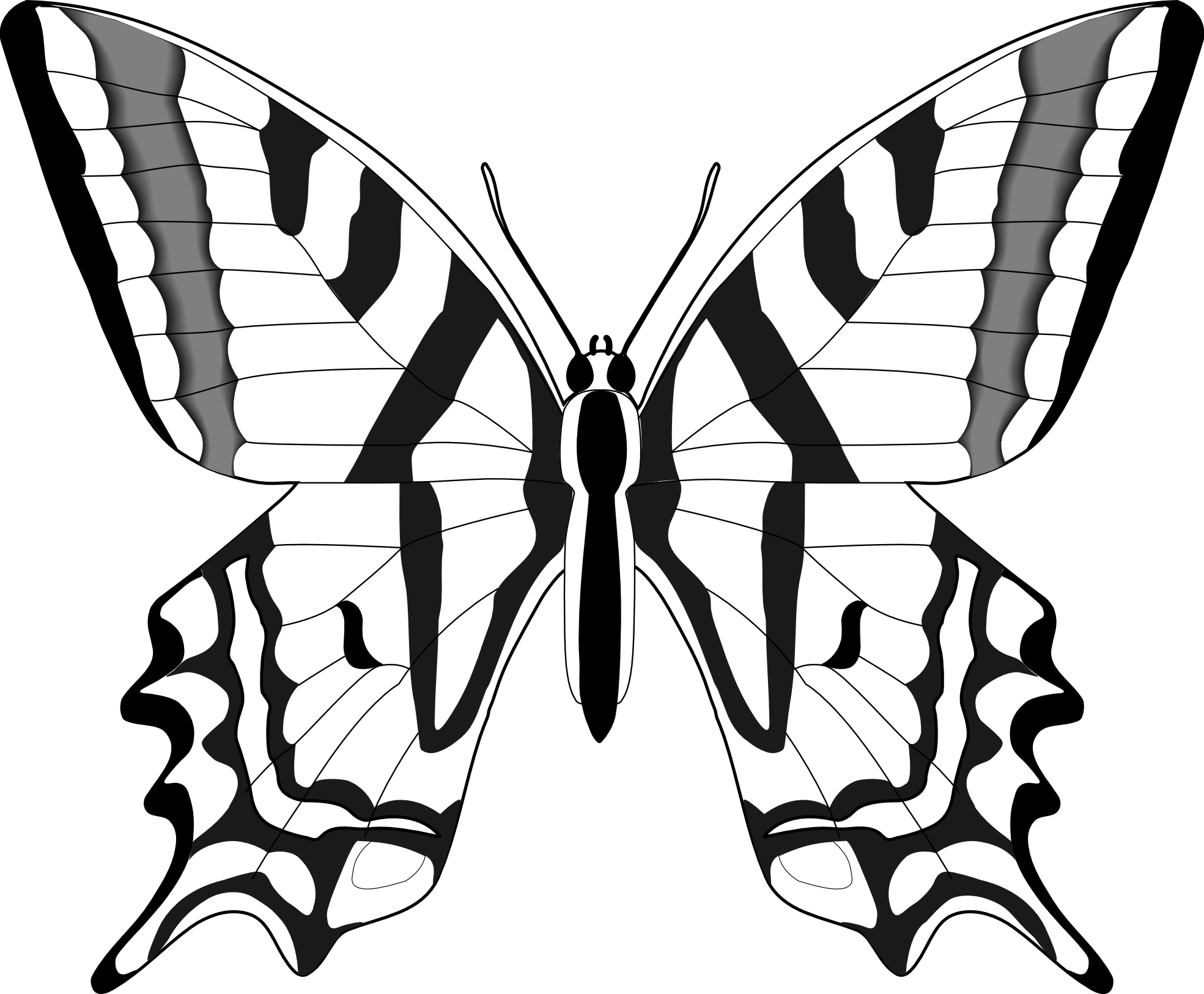 Butterfly clip art black. Moth clipart sketch