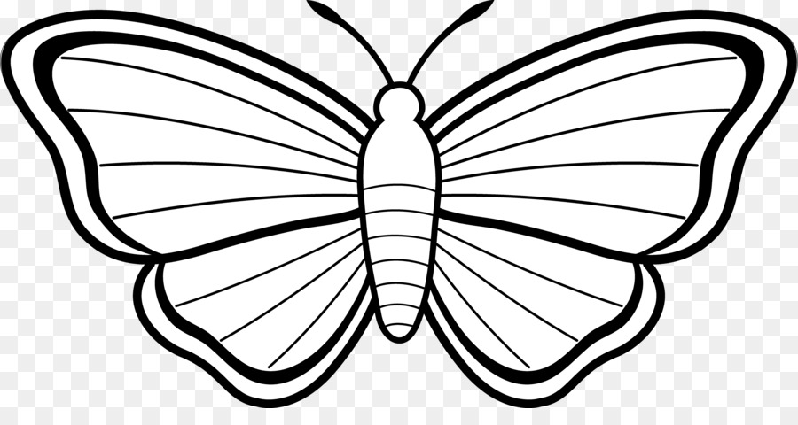 Butterfly black and white. Moth clipart sketch