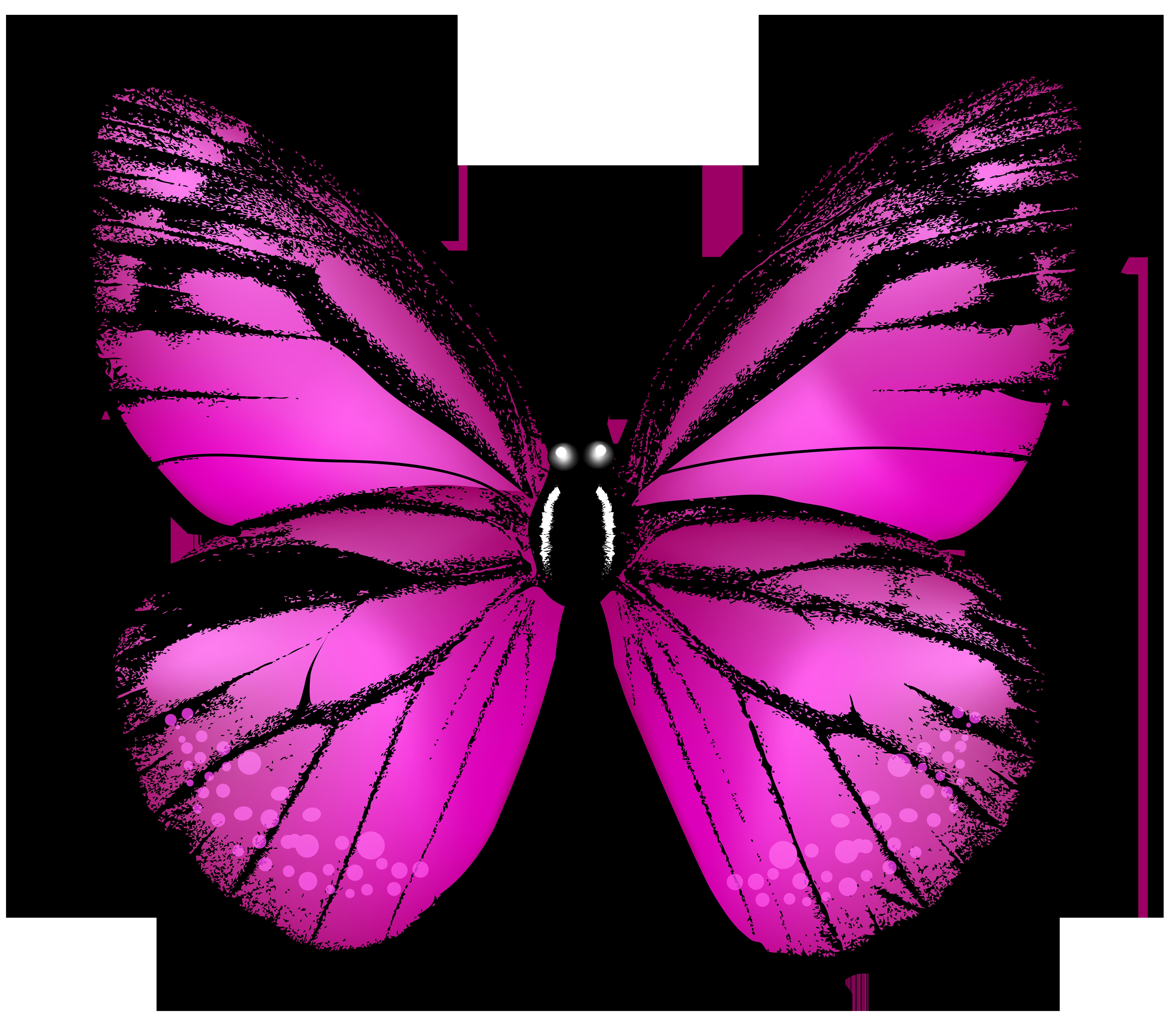 Pink butterfly clip art. Moth clipart transparent