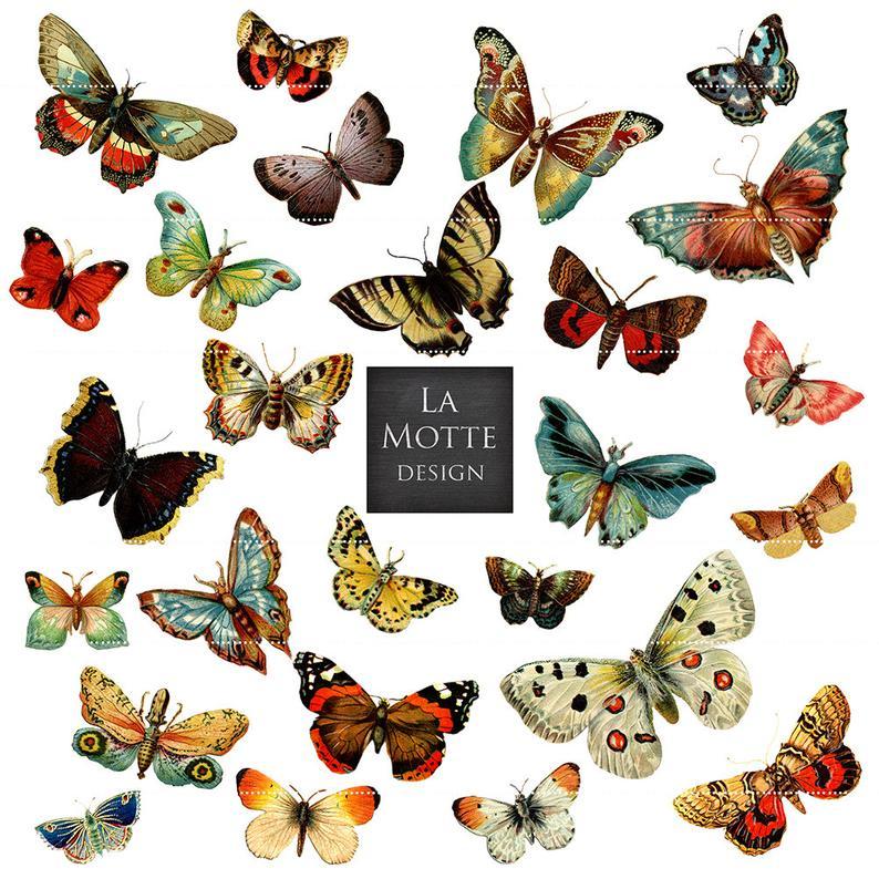 Moth clipart vintage butterfly. Scrap butterflies and moths