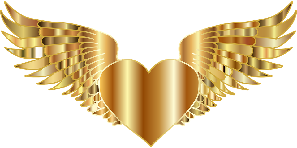 Wings free collection download. Motorcycle clipart gold wing
