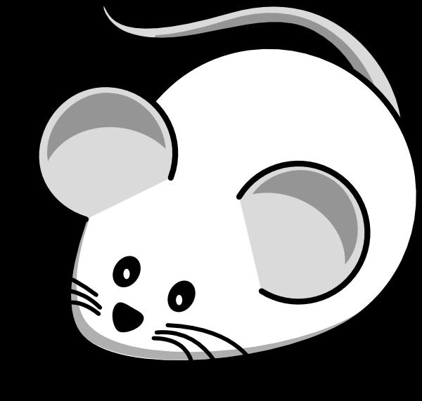 Mouse clipart cat. White clipartblack com animal