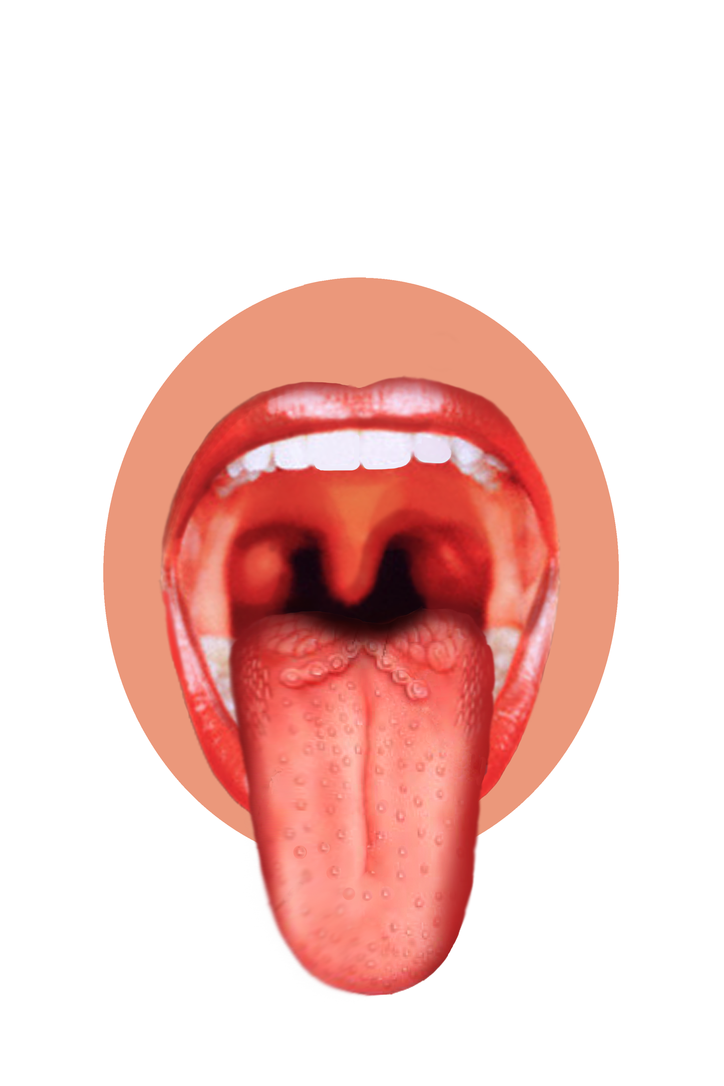 Taste clipart toung. Human tongue png image