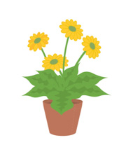 Moving clipart plant. Plants animated gifs