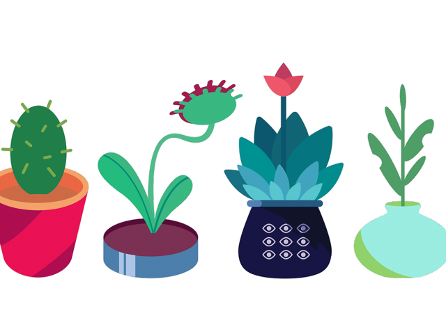 Moving clipart plant. Potted plants pictures free