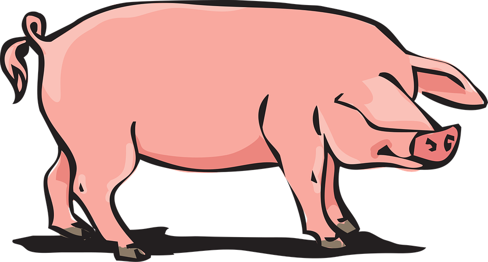 Pig clipart printable. Collection of in mud