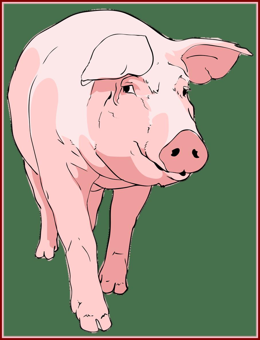 Pig clipart mud. Unbelievable ingenious clip art