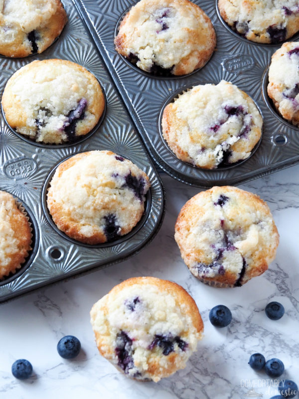 Muffins clipart breakfast pastry. Bakery style blueberry for
