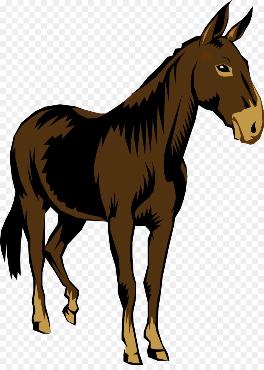 Horse illustration wildlife . Mule clipart cartoon
