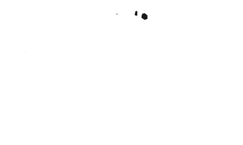 Mules in the community. Mule clipart head