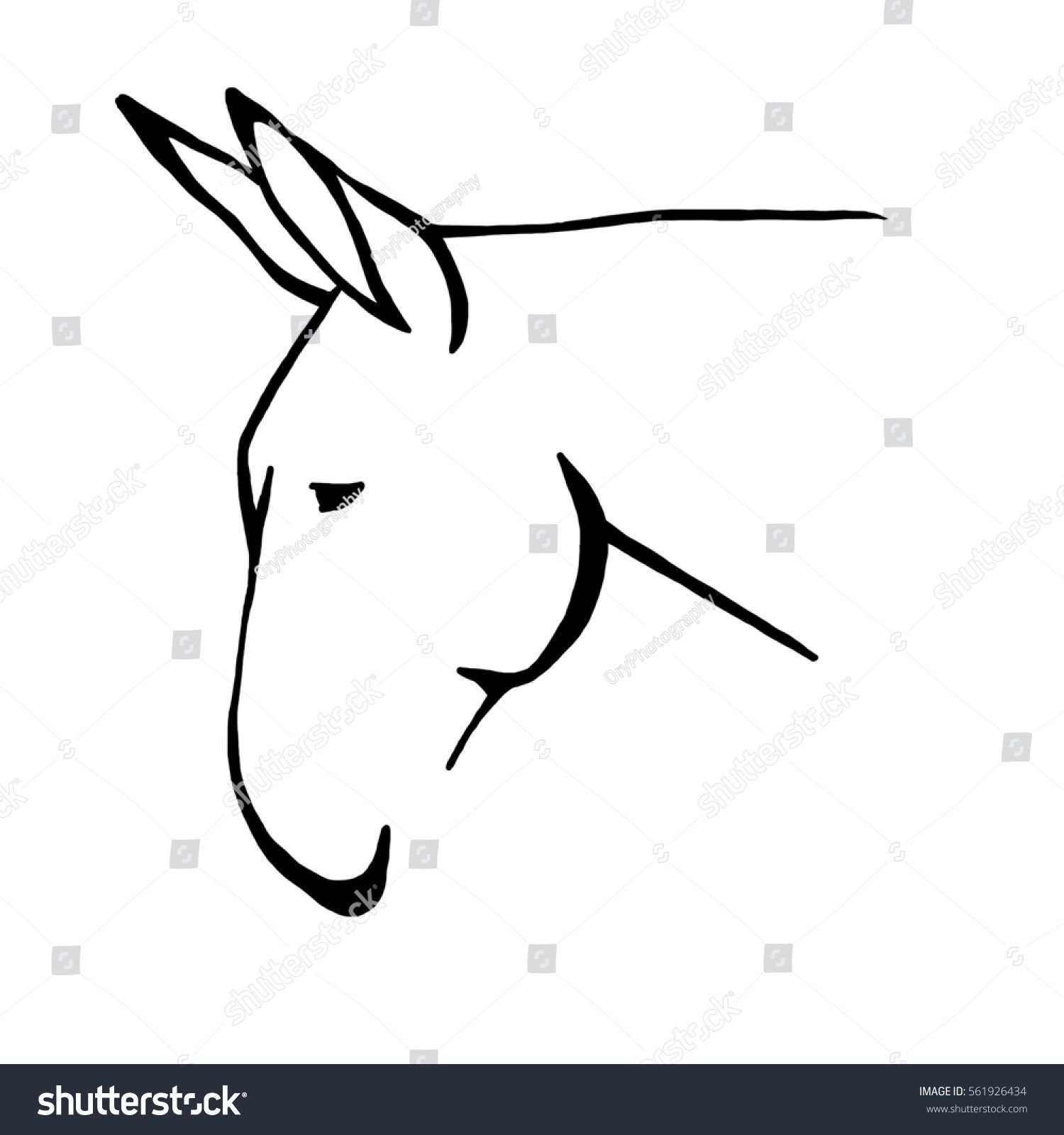 Mule clipart head. Image result for crafts