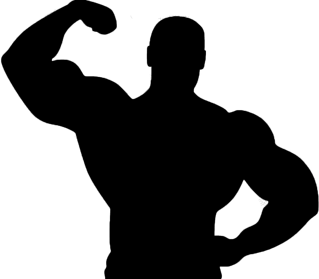 Panda free images info. Muscle clipart