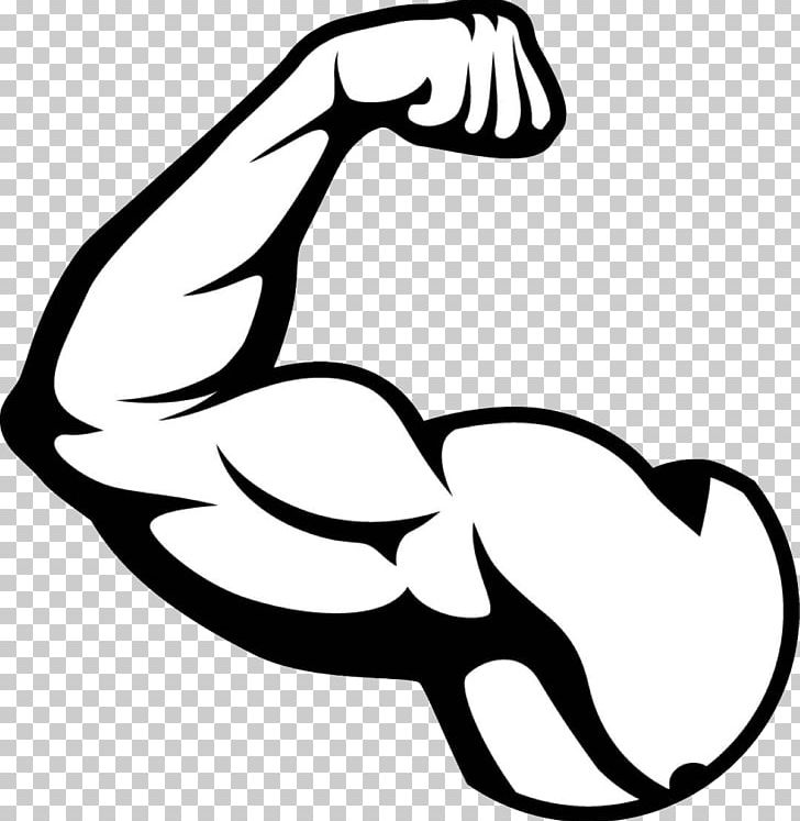 Muscle clipart arm logo. Biceps png art artwork