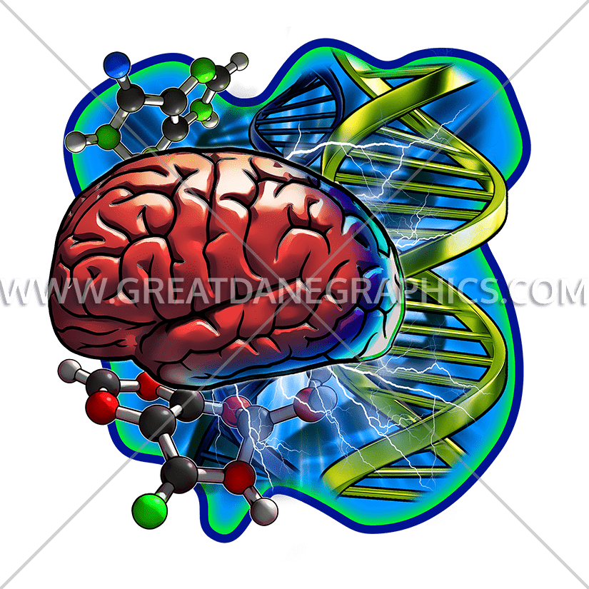 Dna cells production ready. Muscles clipart brain
