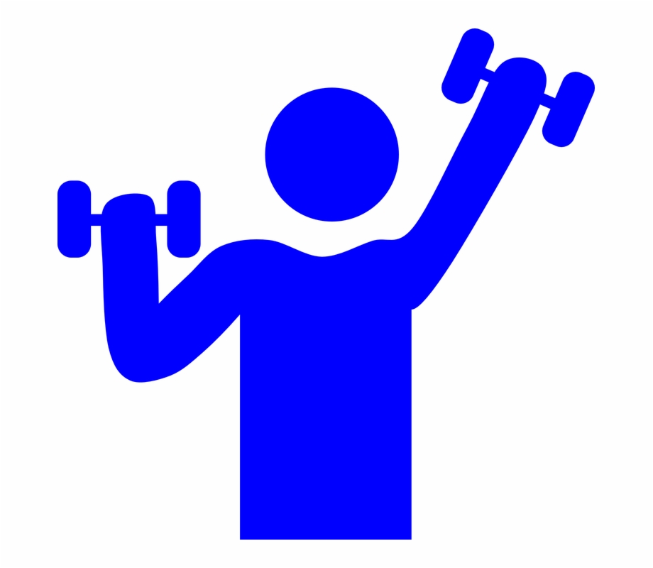 Weight clipart muscle. Health and fitness gym