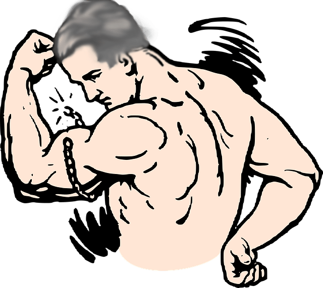 Muscle clipart muscle mass. Muscles defy age live