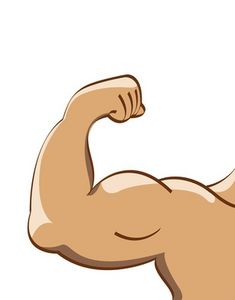 Muscle clipart muscle mass. Body fat vs lean