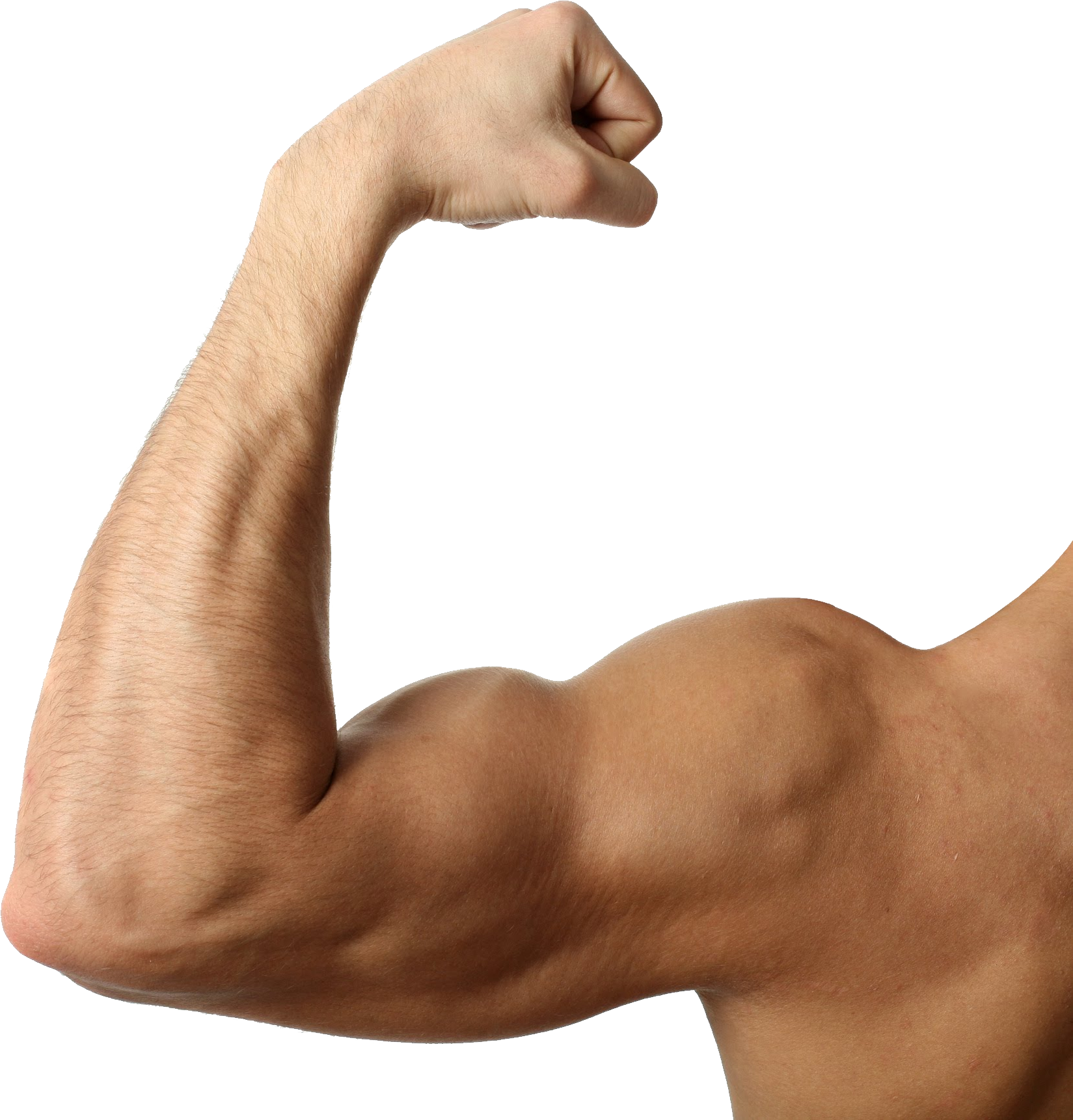 Muscle clipart transparent background. Png image purepng free