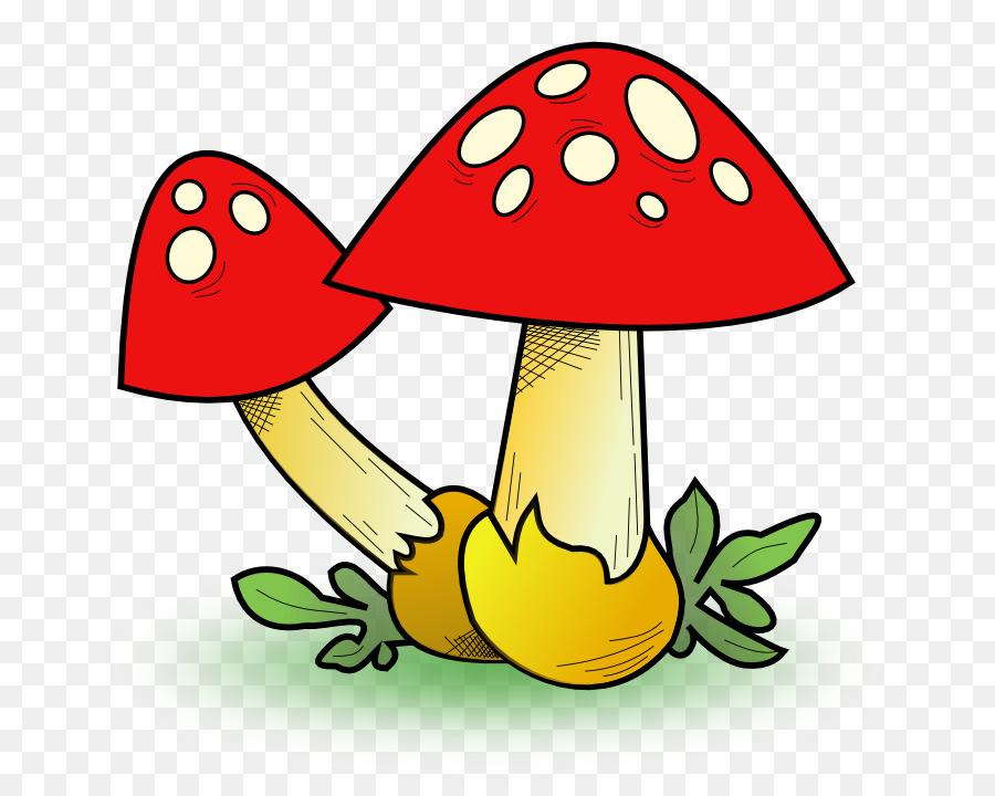 Edible mushroom clip art. Mushrooms clipart fungus