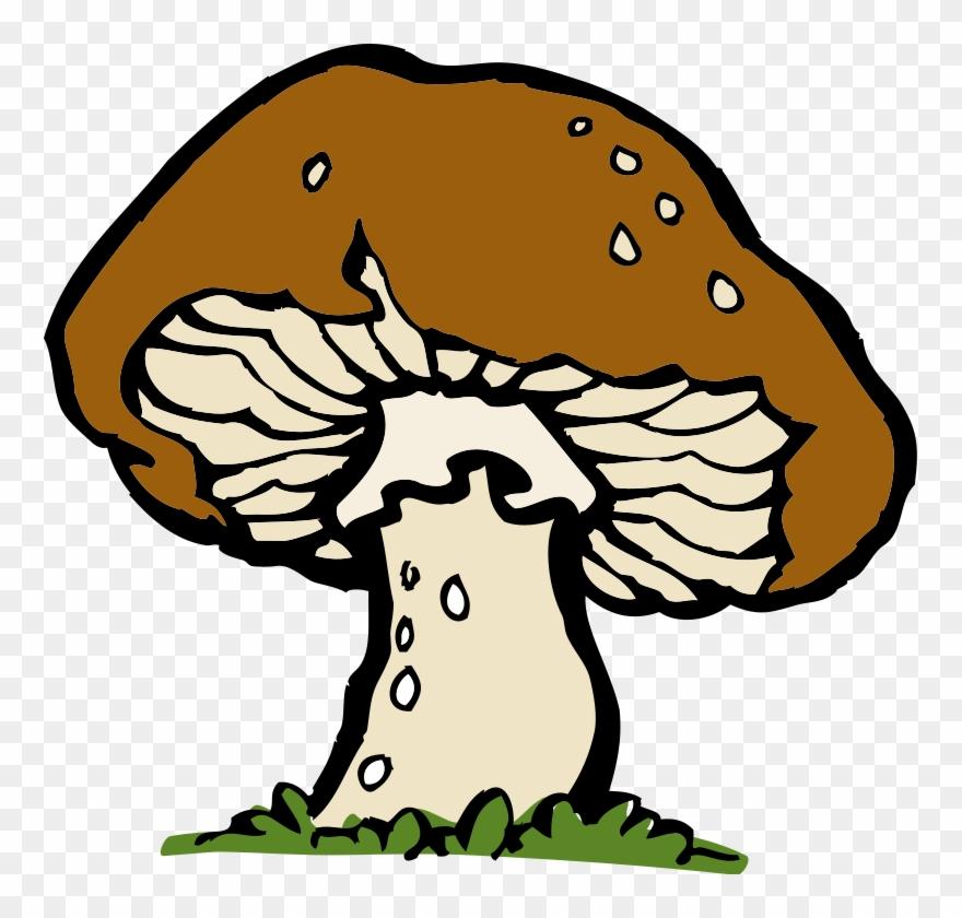 Pilz gro kostenloses clip. Mushroom clipart brown mushroom