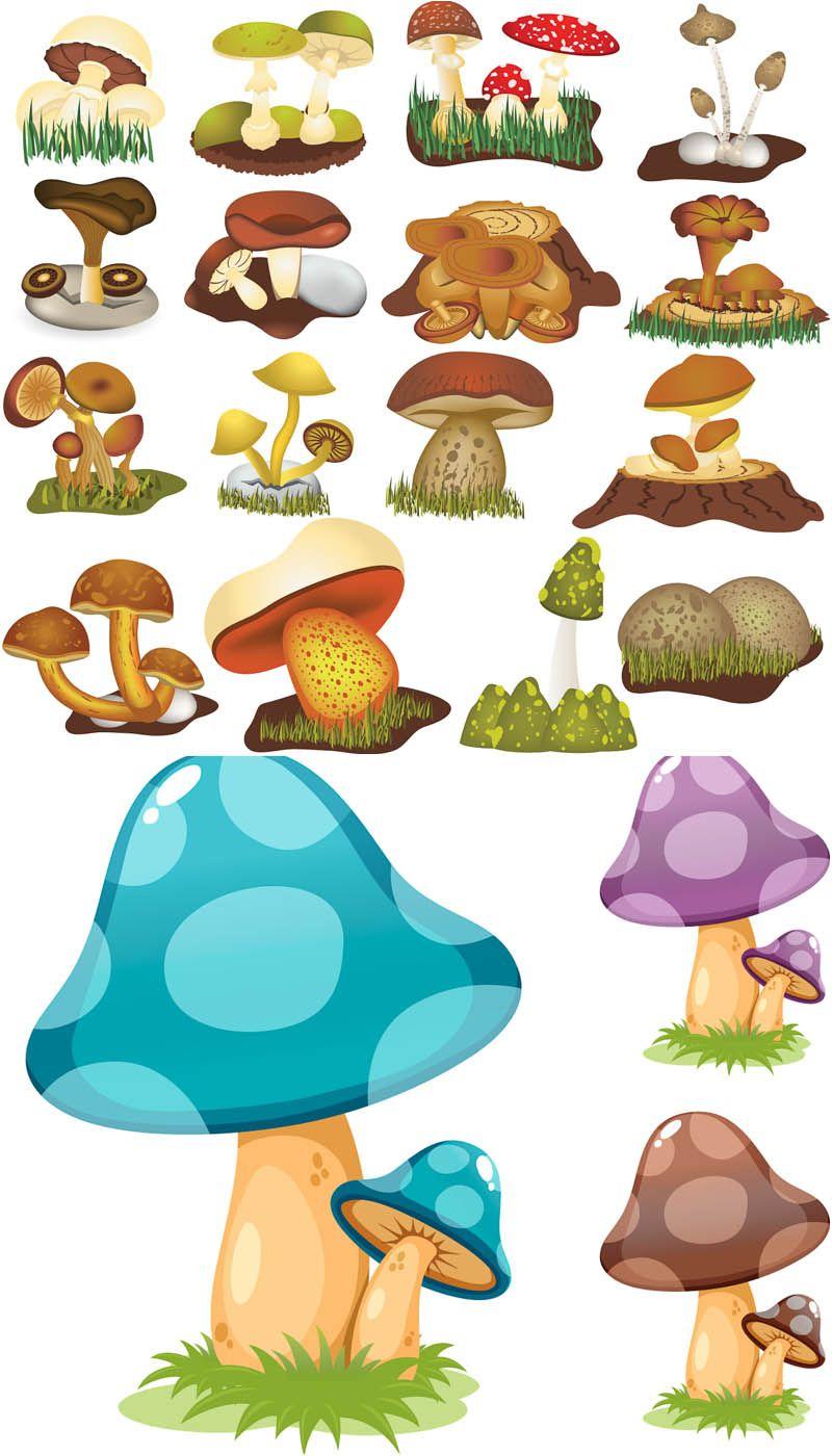 Mushroom drawings vector . Mushrooms clipart cartoon character