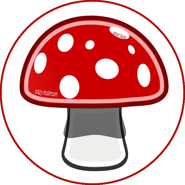 Mushroom crazy house