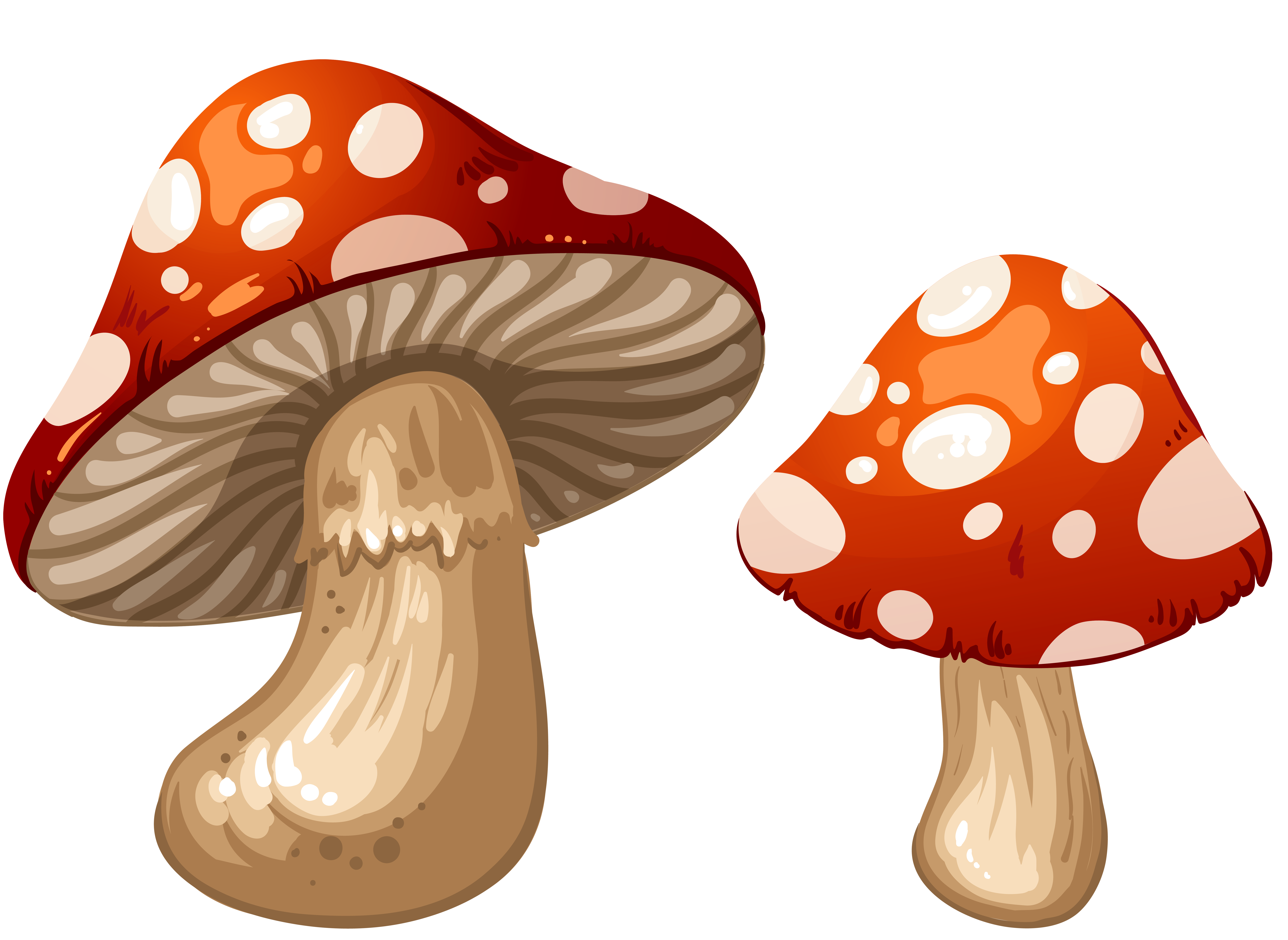 Png clip art best. Mushrooms clipart smiley face