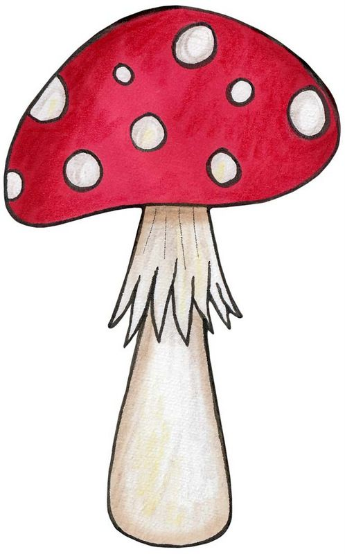 Mushroom for an woodlands. Mushrooms clipart enchanted forest