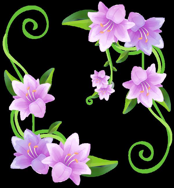 Mushrooms flower