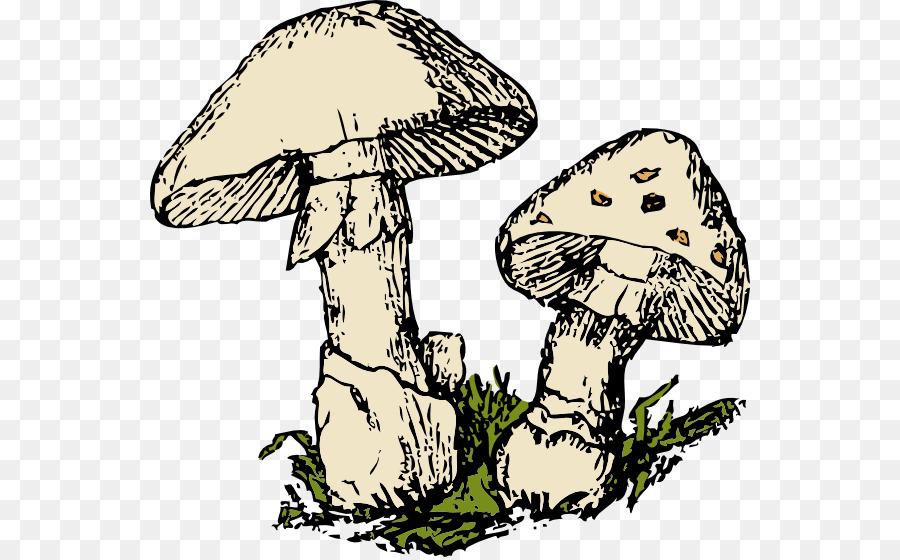 Cartoon transparent clip art. Mushroom clipart mushroom tree