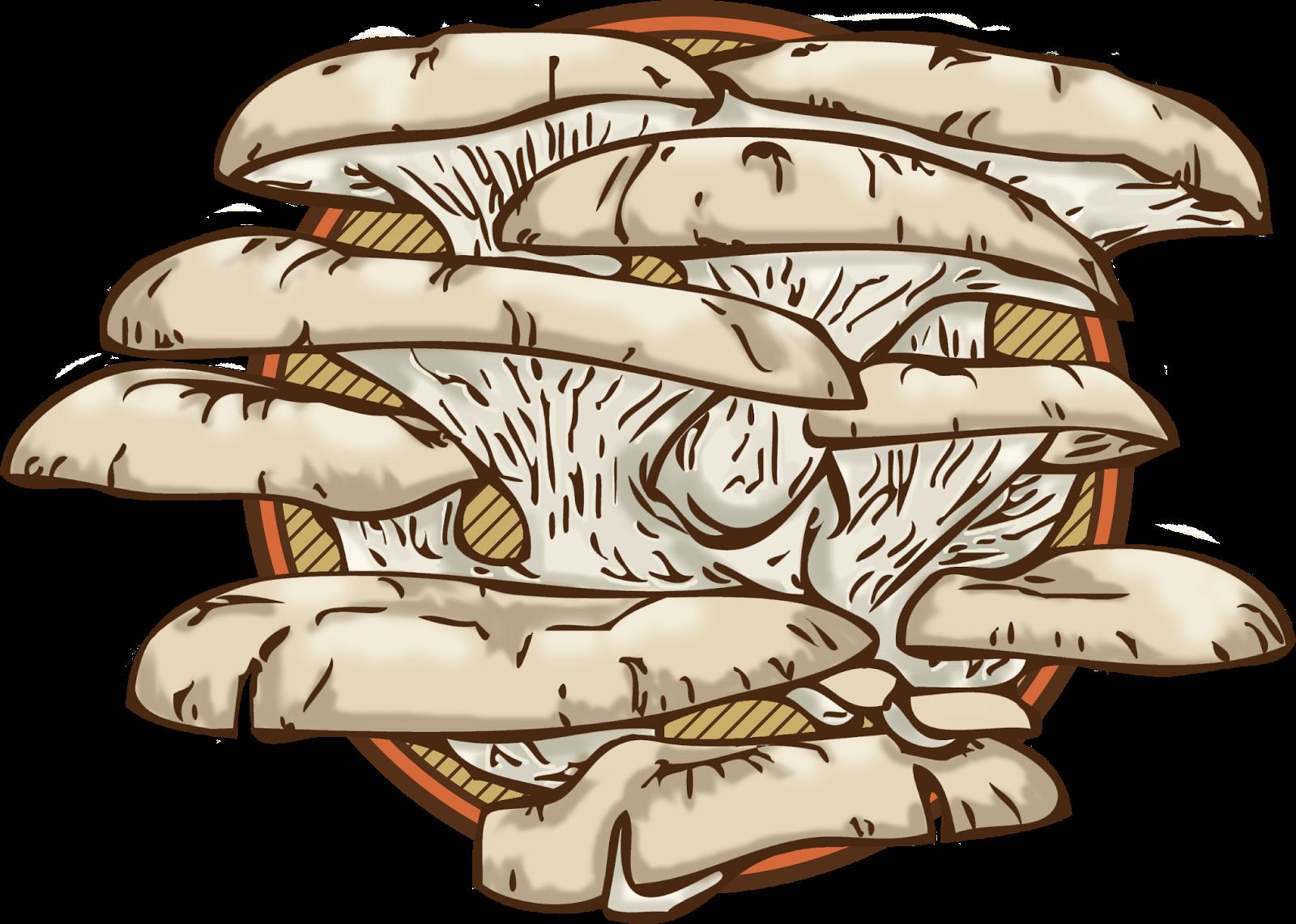 Mushrooms clipart oyster mushroom. Mb design mahala gourmet