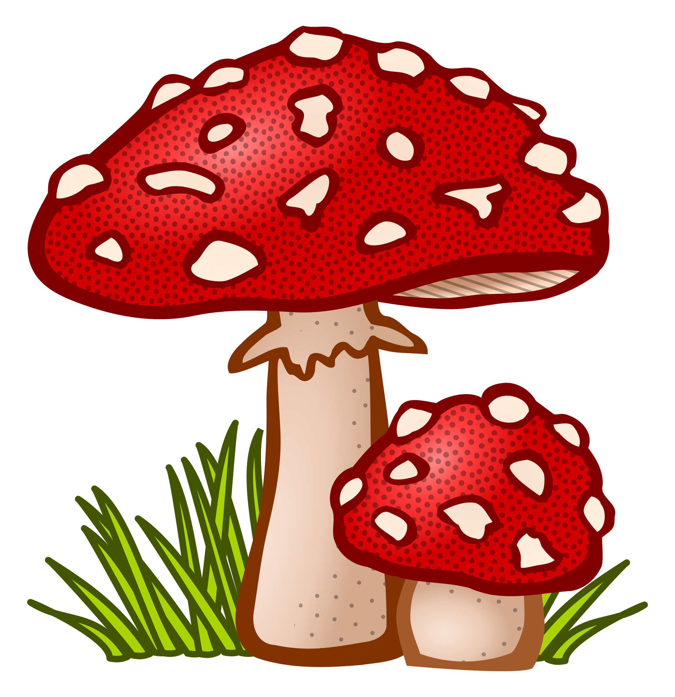 Pink clipart toadstool. Coloured big image png
