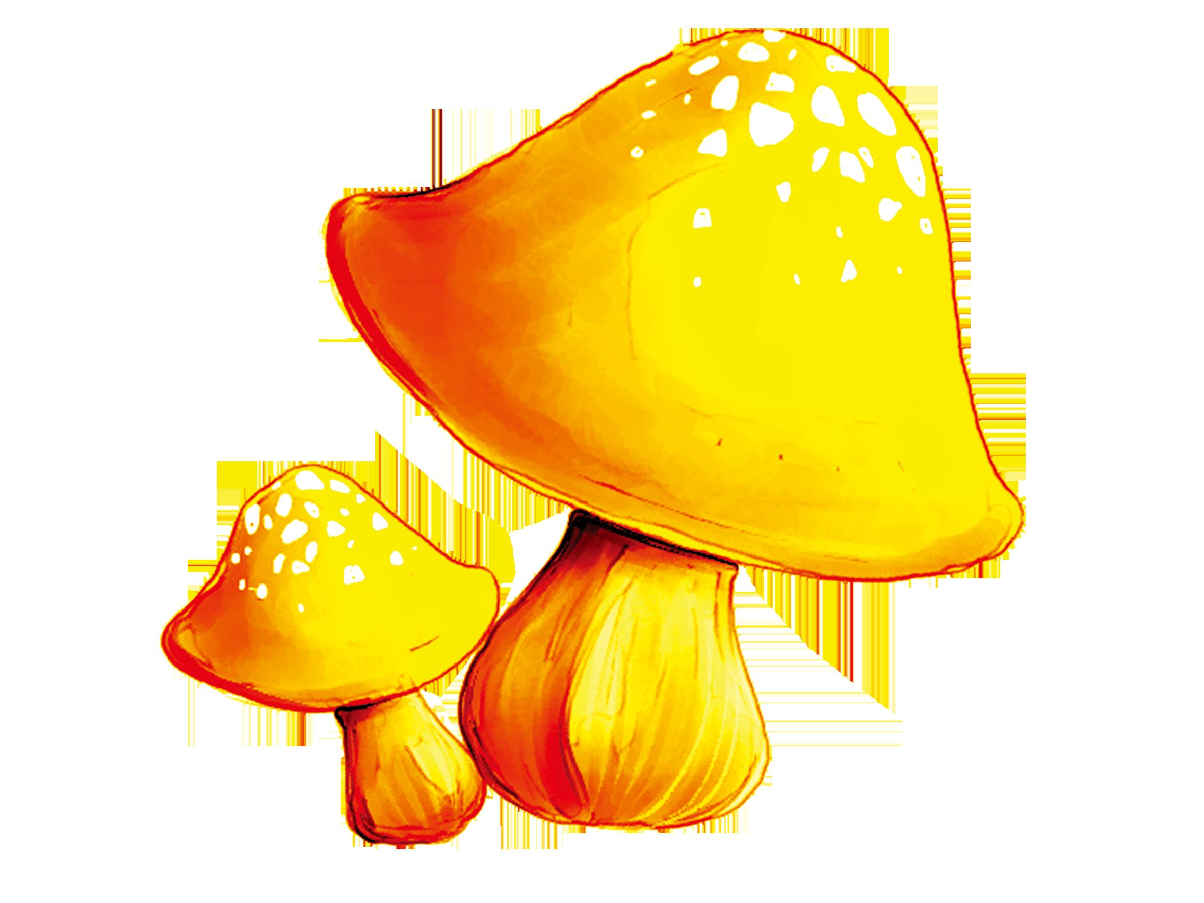 Download ping clip art. Mushrooms clipart button mushroom