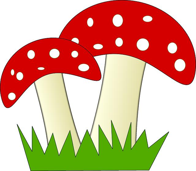 Imagem gratis no pixabay. Mushrooms clipart spotty