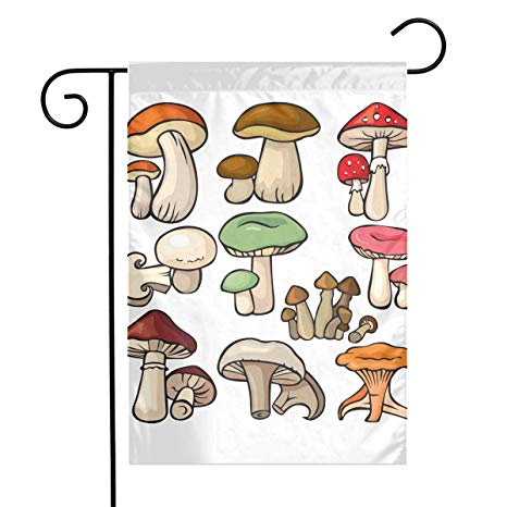 Amazon com hongyemao mushrooms. Mushroom clipart sweet home