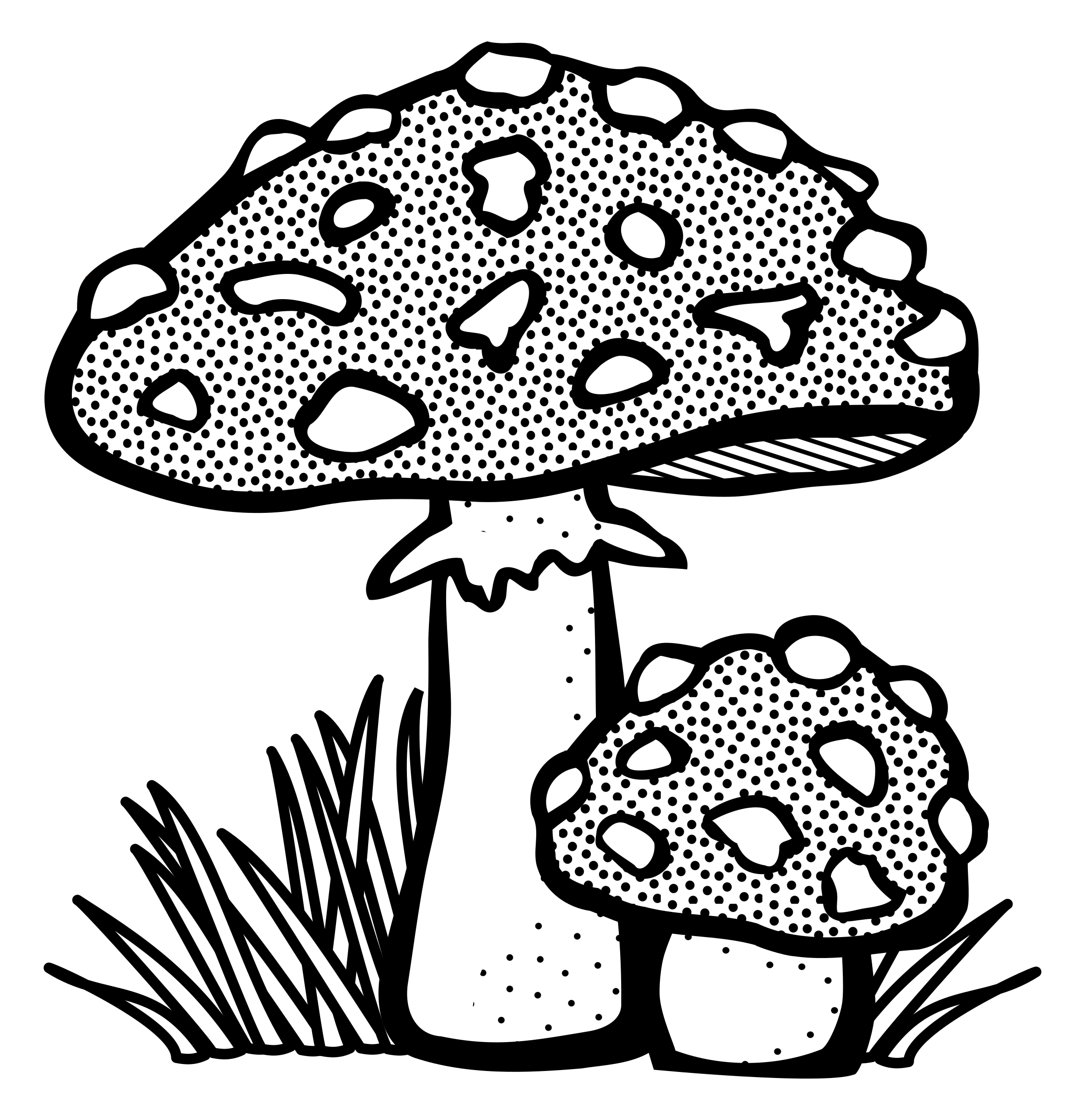 Woodland clipart toadstool. Drawing at getdrawings com