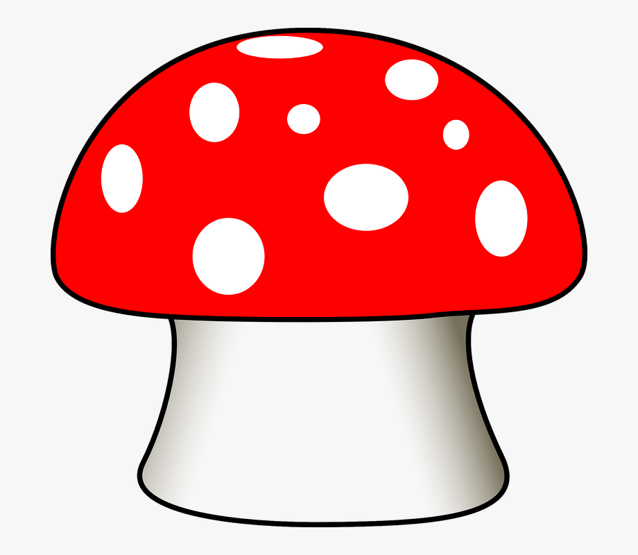 Mushroom toadstool fungus poisonous. Mushrooms clipart sweet home