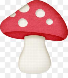 Mushrooms clipart fungus. Cute woodland mushroom png