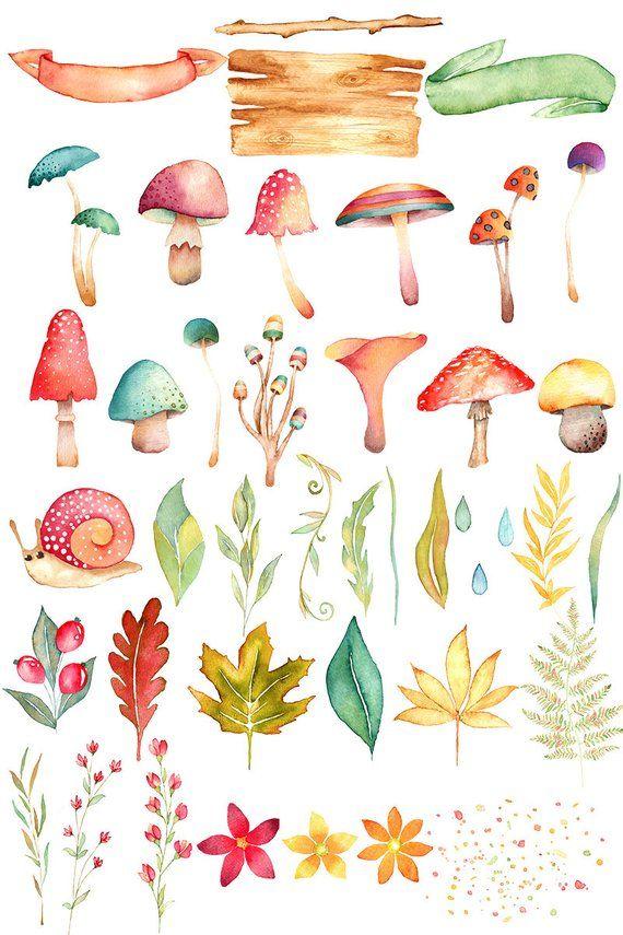 Mushrooms clipart autumn. Watercolor mushroom fall woodland