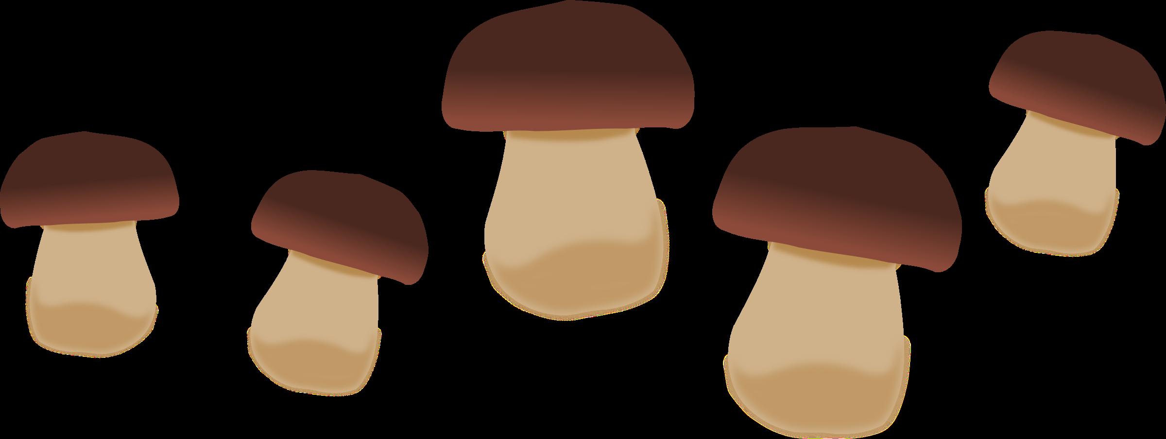 Big image png. Mushrooms clipart
