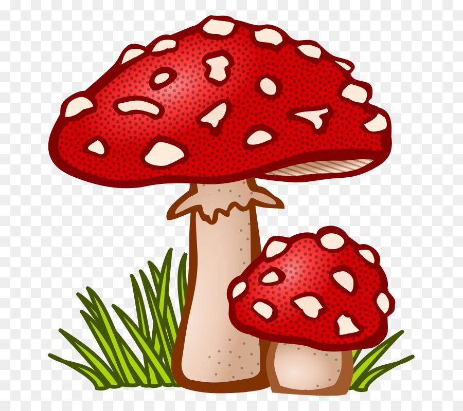 Mushroom cloud png download. Mushrooms clipart fungus