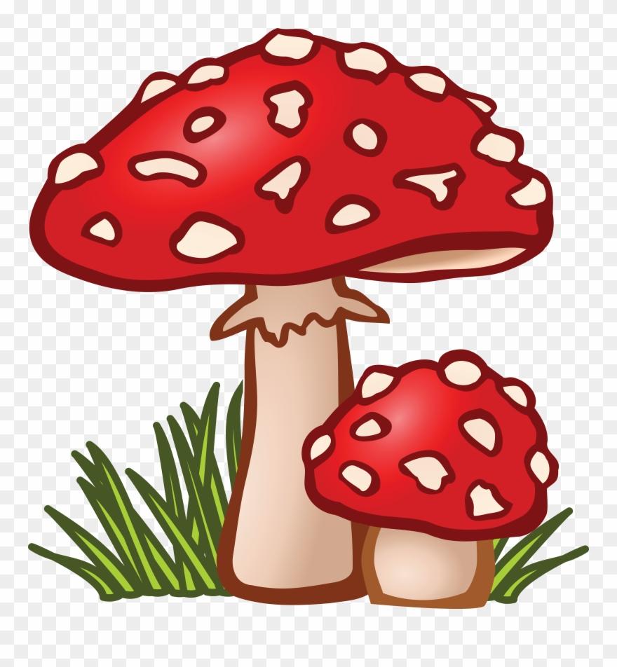 Mushrooms clipart mushroon. Free of mushroom png